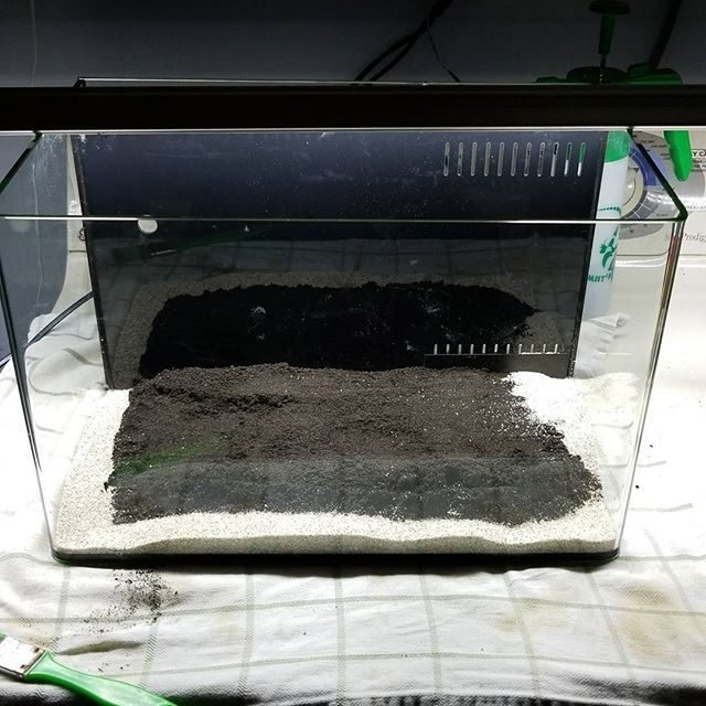 Home made dirt and pool filter sand.  It's important to keep the dirt away from the glass so you don't see layers of substrate.  #aquascaping