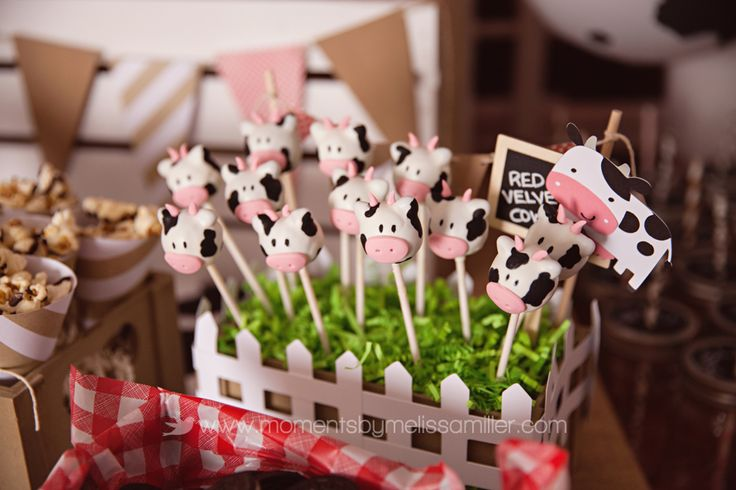 Farm Theme Birthday Party Girl Toddler 2 44 food table, cow cake pops