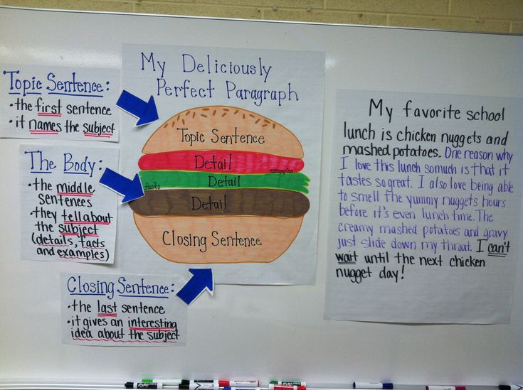Hamburger Style Paragraph Model | School | Pinterest ...