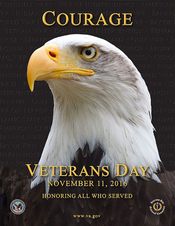 """For Veterans Day, we honor the many veterans with print disabilities who are members of Bookshare. The U.S. Veterans Administration poster for 2016 says, """"Courage. Veterans Day. November 22, 2016. Honoring all who served. www.va.gov"""" in yellow text over a closeup photo of a bald eagle."""