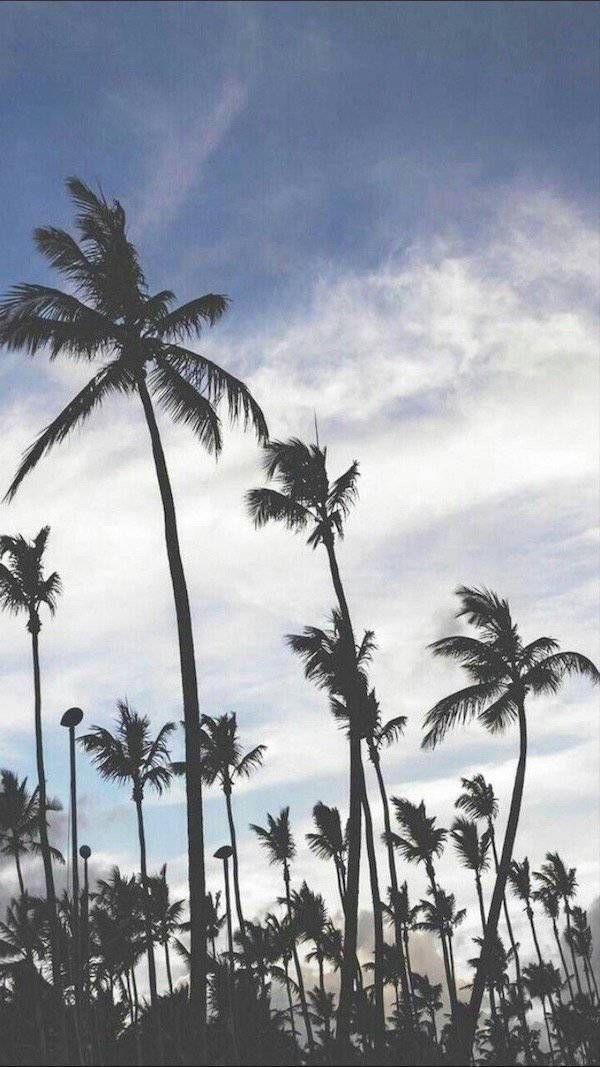Le Top 50 Des Plus Beaux Fonds D Ecran Pour Votre Smartphone Background Beach Photography Tumblr Backgrounds