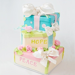 Cake Box Decorating Ideas 34 Best Gift Box Cakes Images On Pinterest  Descendants Cake