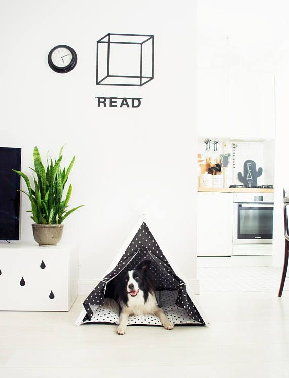 Dog bed - black&white teepee tent Scandiavian interior, white walls, black accents. Nordic small kitchen.