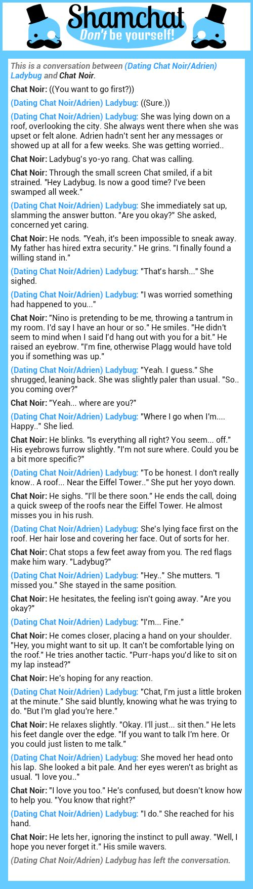 A conversation between Chat Noir and (Dating Chat Noir/Adrien) Ladybug