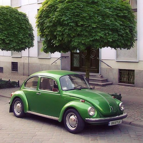 Classic VW Beetle   Classic VW Beetle   Flickr - Photo Sharing!