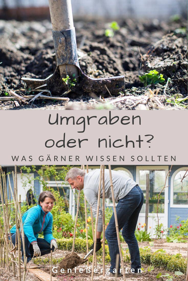 Umgraben Oder Nicht Was Gartner Wissen Mussen Garten Umgraben Garten Bepflanzen Garten Planen