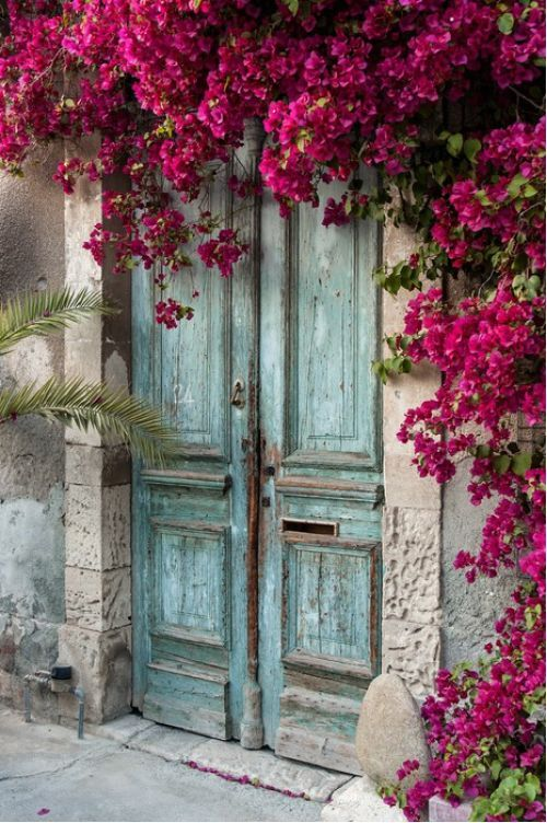 Old wooden door with bougainvillea from $41.99 | www.wallartprints.com.au #VillagePictures #LandscapePhotography