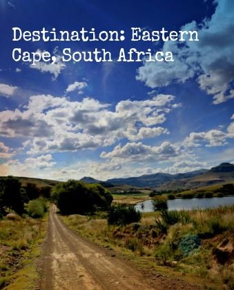 Destination: Eastern Cape, South Africa http://solotravelerblog.com/solo-travel-destination-eastern-cape-south-africa/