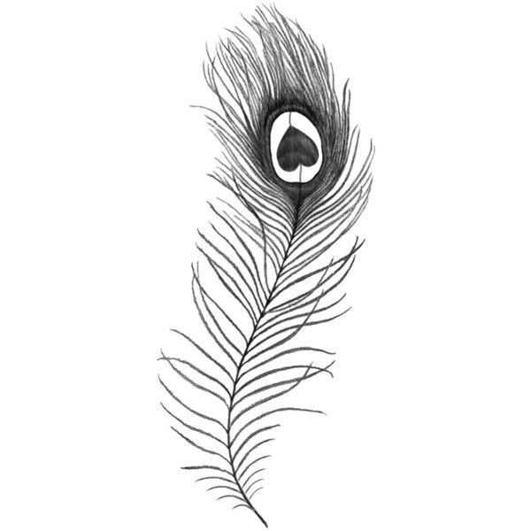 Peacock Feather temporary tattoo ($4.32) ❤ liked on Polyvore featuring accessories, body art, fillers, doodles, drawings, backgrounds, tattoo, quotes, text and saying