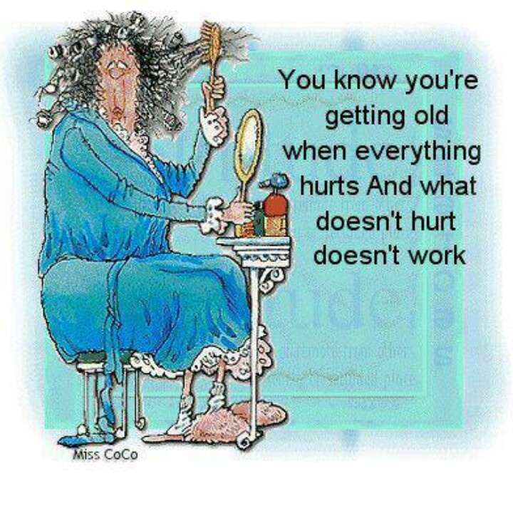 Best 25 Old Lady Humor Ideas On Pinterest: 17 Best Ideas About Old Lady Humor On Pinterest