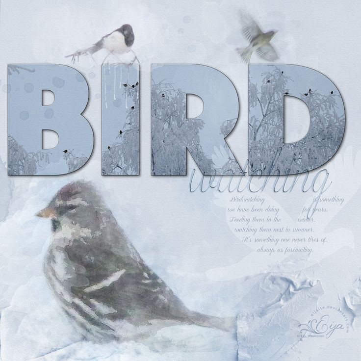 Birds in our garden. Photos by me. Made for Oscraps typography challenge, February 2016. Resources: - paper from ArtPlay Palette Neige by Anna Aspnes - paper from ArtPlay MiniPalette Honor by Anna ...