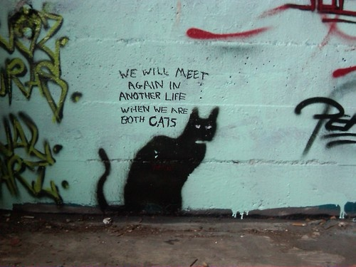 We will meet again in another life when we are both cats