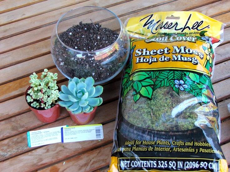 325 sq in sheet moss soil cover