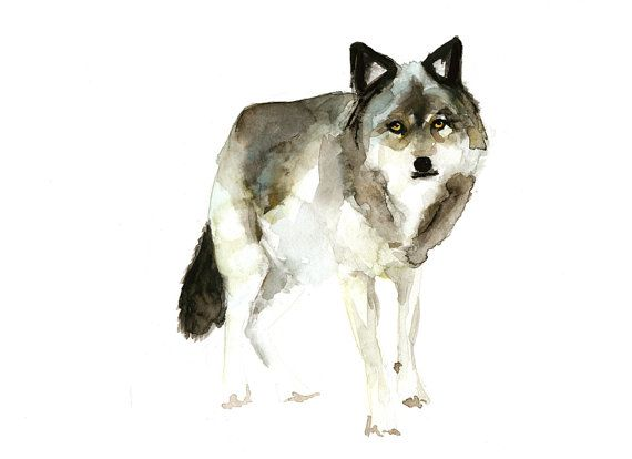 Archival print of a wolf watercolor painting. Limited edition Animal print. Wolf art by Michelle Dujardin. on Etsy, $21.70 CAD