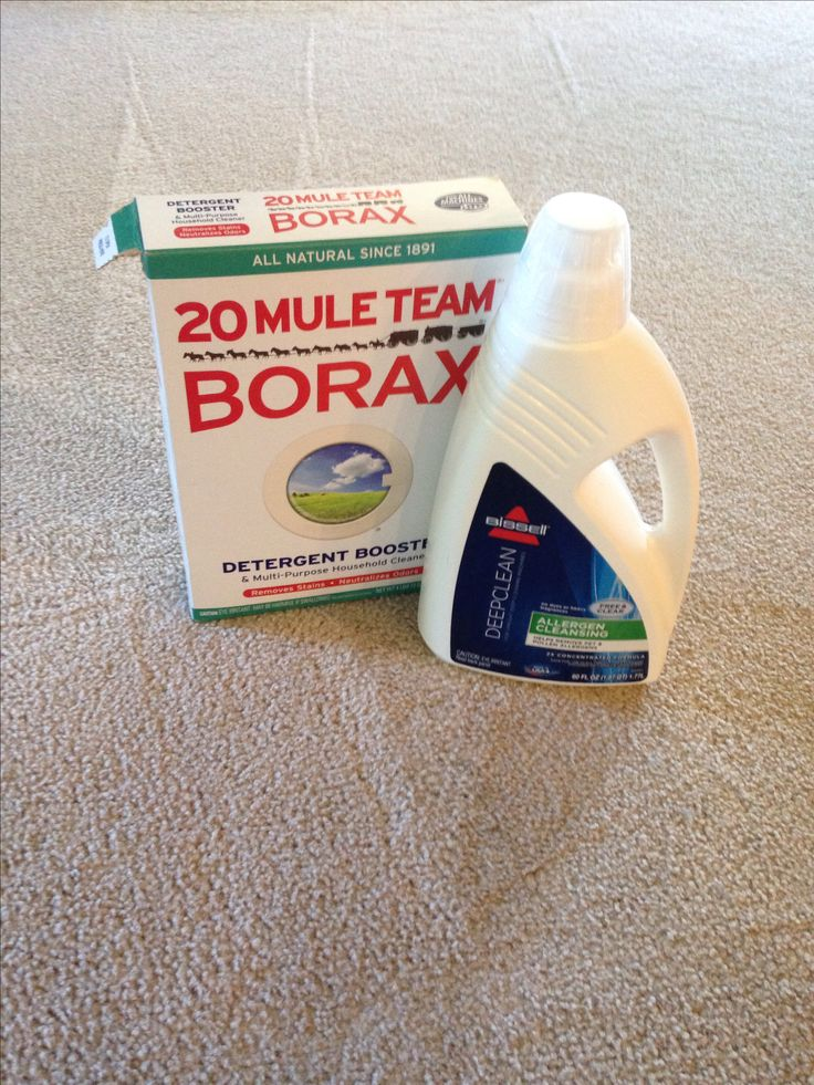 The best carpet cleaning solution for pet stains and eliminates odor.  Boil 2 cups water with 1/2 cup borax add to your steam cleaner basin add your carpet cleaning solution and fill the rest with hot water.