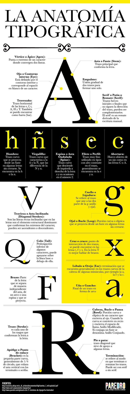 Hola: Una infografía sobre la anatomía tipográfica. Vía Un saludo