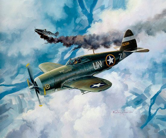 723 best allied planes lightning corsair thunderbolt for Aviation wall mural