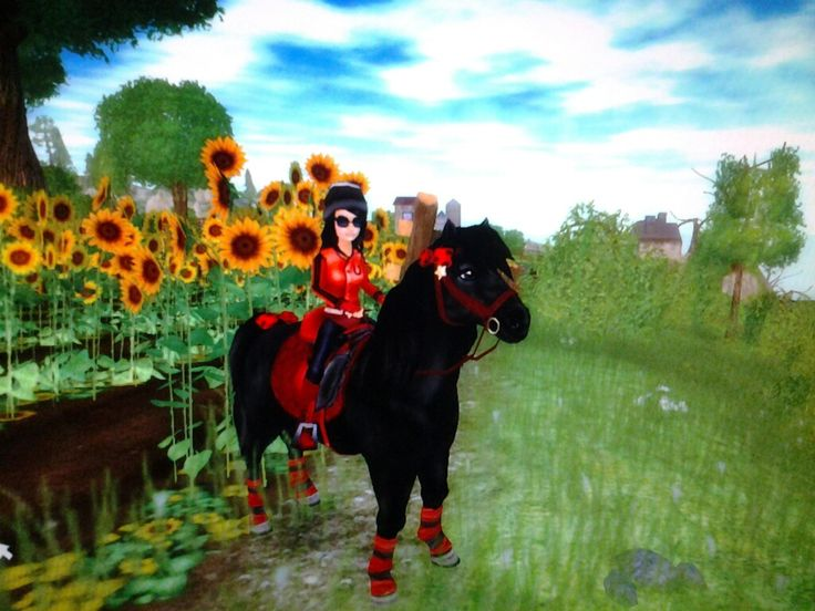 So this is me and my horse, Dakota! :D