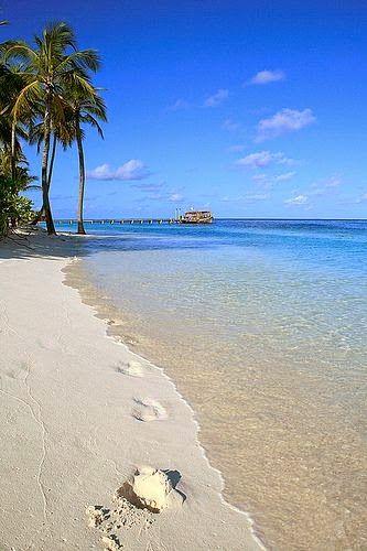Beach Orada Florida Keys This Place