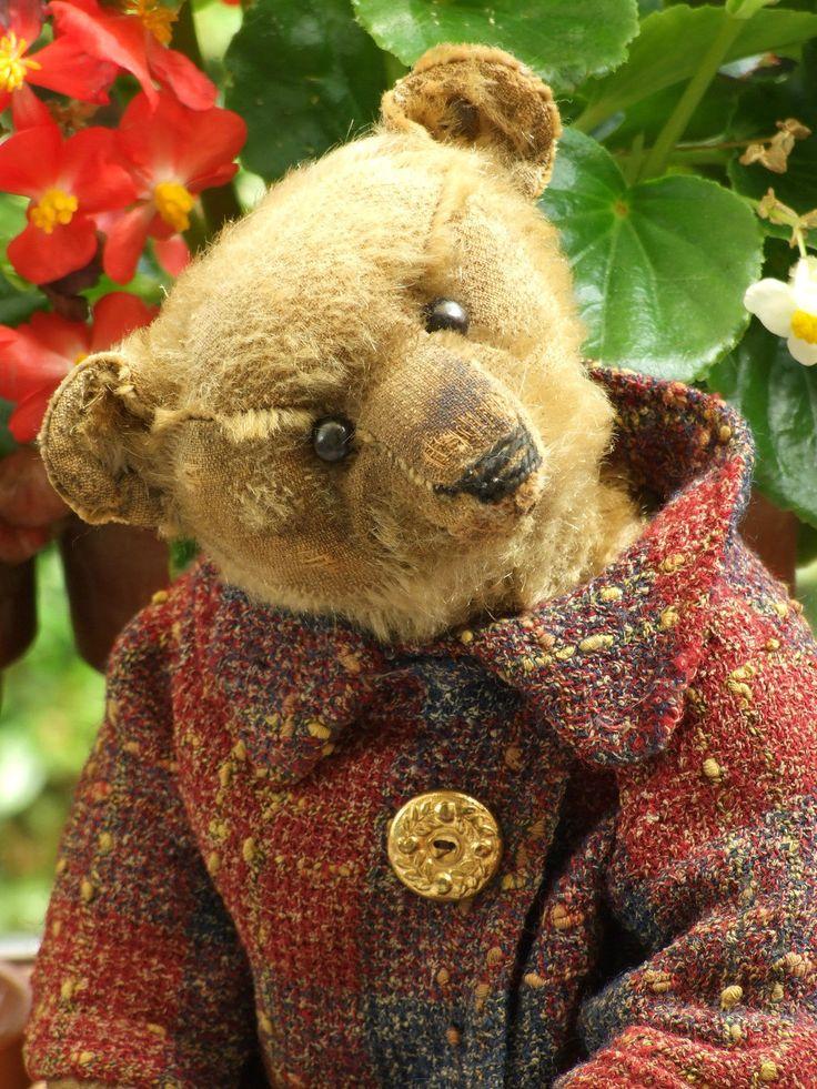 Antique Vintage Steiff Mohair Teddy Bear C 1910 with Button in Ear   eBay