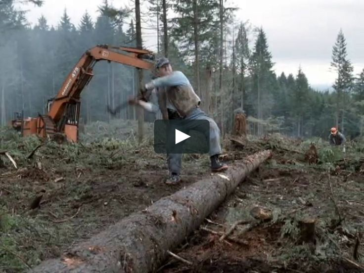 "This is ""Mike's Hard Lemonade, ""Lumberjack"""" by William Gelner on Vimeo, the home for high quality videos and the people who love them."