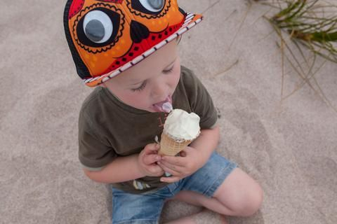 Salted Honey Ice Cream – Hunt and Gather Bee Co (O'Brien Agriculture Ltd.)