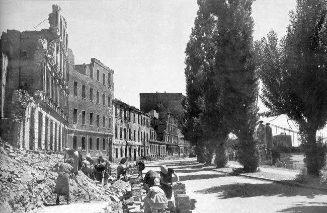 Domy przy ul.J-Curie między m.Grunwaldzkim a m.Pokoju. Obecnie tych domów już nie ma, są na ich miejscu niezbyt ciekawe zabudowania Uniwersytetu Wrocławskiego.A topole wycięto w zeszłym roku. Rok 1945