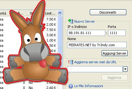 La lista dei server di Emule è vuota, come faccio a ripristinarla? Uno dei problemi su eMule è lo svuotamento della lista dei server, ecco come risolvere.