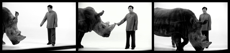 Did you know Jackie Chan can stop a rhino with just one hand? Here he meets Spike, his co-star in our newest PSA, in partnership with African Wildlife Foundation.