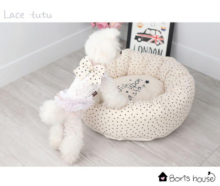Robe Lace Tutu Blanche Boris House www.sweetiedog.com #poodle #dogdress #borishouse #tutu #bow #dog #chien #dogclothes