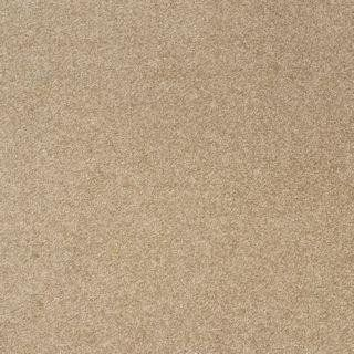 Best 20 Cream Carpet Ideas On Pinterest Grey