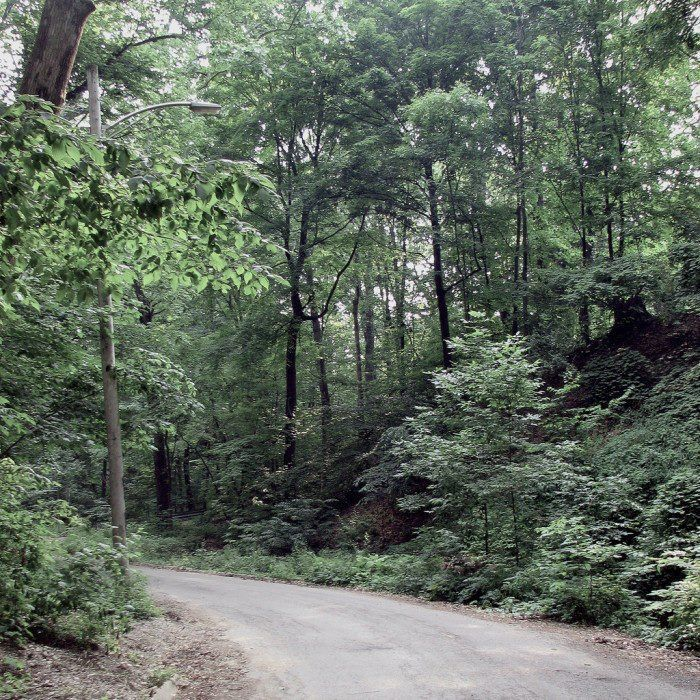 8 The Legend Of Walhalla Road Haunted Places Most Haunted Urban Legends