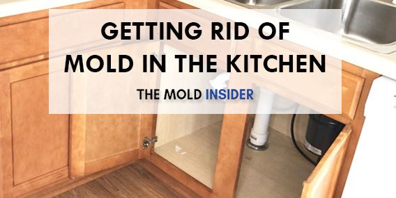 How To Get Rid Of Mold Under Kitchen Sink