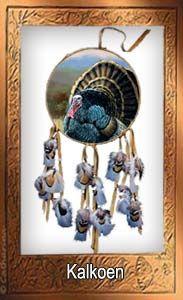 Kalkoenen worden met name gegeten met Thanksgiving, een traditioneel Amerikaans feest. Hier worden kalkoenen in feite geofferd opdat anderen kunnen leven.  De Kalkoen belichaamt de geest van het weggeven, een ceremonie waarin zij die hebben geven aan hen die niet hebben.  De kalkoen vraagt je om je eens af te vragen wie jij vandaag zou kunnen helpen.