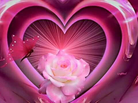 17 best images about roses hearts butterflies on - Pics of roses and hearts ...