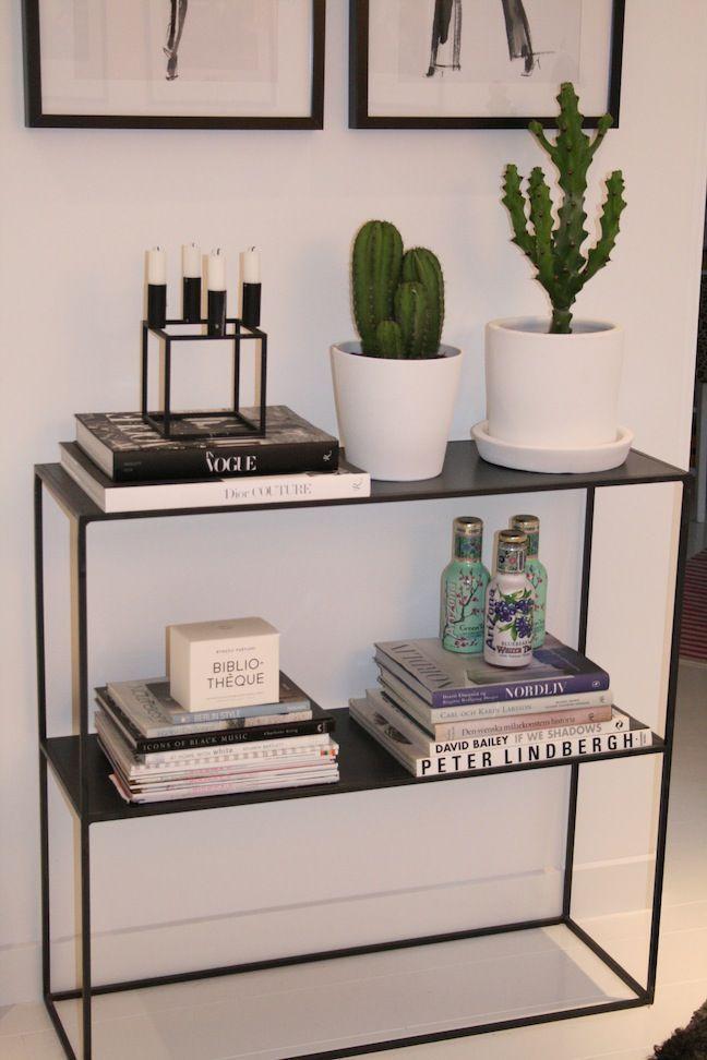 Köp nån kaktus (liten eller jättestor, på bordet eller i golvkruka)