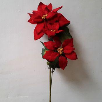 Bársony mikulásvirág 3 virággal