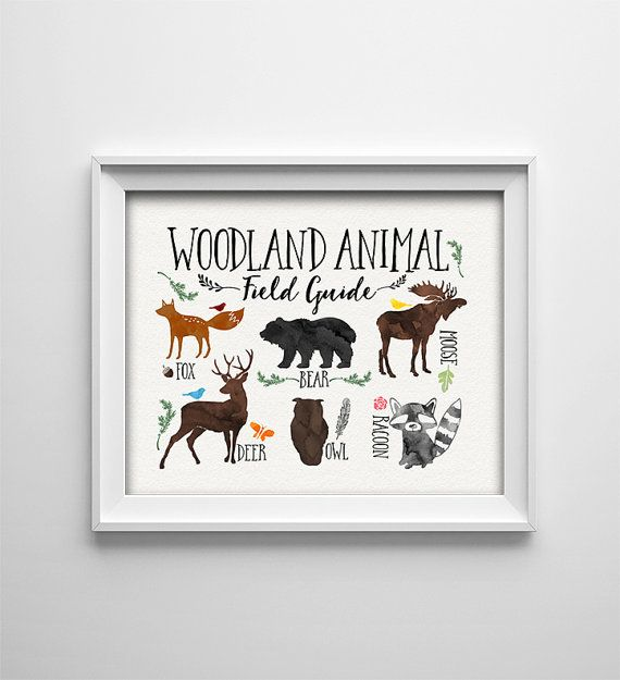 INSTANT DOWNLOAD 8X10 printable digital art - Woodland Animal Field Guide - Woodland Neutral nursery wall art - Brown - Baby - shower gift  This