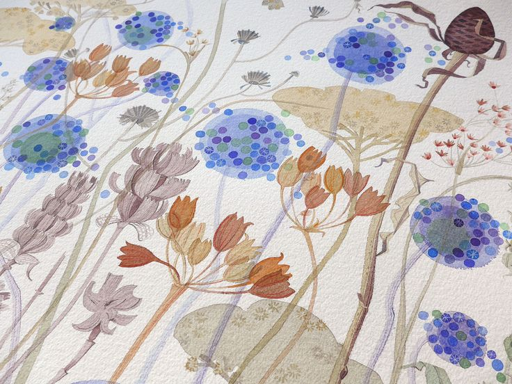 "Angie Lewin ""Wild Garden Seedheads"" (detail) - one of the watercolours forming part of 'A Natural Selection', an exhibition of Angie's paintings at The Scottish Gallery, Edinburgh, from 1-30 May 2015 http://www.angielewin.co.uk/pages/exhibitions"