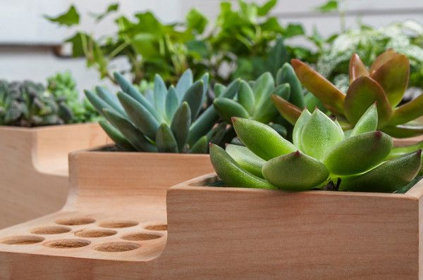 The wooden Eco Pot by Julia Kononenko.