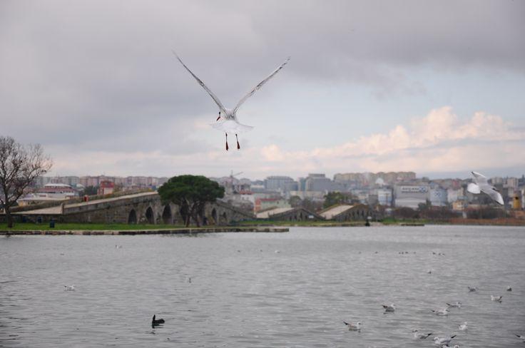 Kanuni Sultan Süleyman köprüsü Büyükçekmece İstanbul