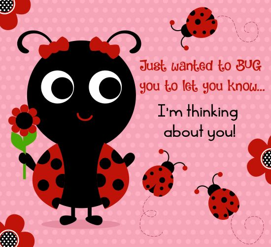Bug your #brother today & let him know you're thinking of him on #brothersandsisters day this cute #ecard.