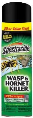 awesome Spectracide 95715-1 Wasp and Hornet Killer Aerosol, 20-Ounce, Case of 12 - For Sale
