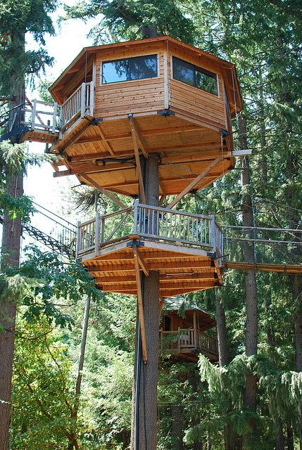 Treehouse Resort – Cave Junction, Or  How many kids have dreamed of escaping into their backyard and climbing into own little treehouse? Well, with trunks running straight through your room, this Oregon treesort is a dream come true. This community set in the wilderness boasts of its safe atmosphere (they don't lock doors) and is a very family oriented. Kids will be able to engage in all sorts of activities like swinging on a Tarzan swing or screaming on a zipline!