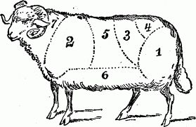 Image result for lamb meat cuts chart