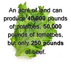 Go vegan = end world hunger - although there is an argument that some land is not suitable for crops but is suitable for livestock