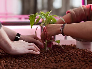 Amazing overview of Aquaponics Events in #Amsterdam