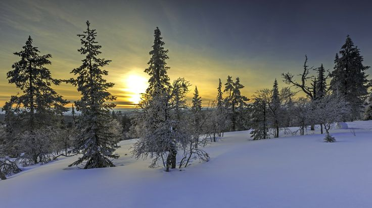 Photo Sunset in Lapland by Jari Ehrström on 500px