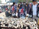 宮島かき(牡蠣)祭