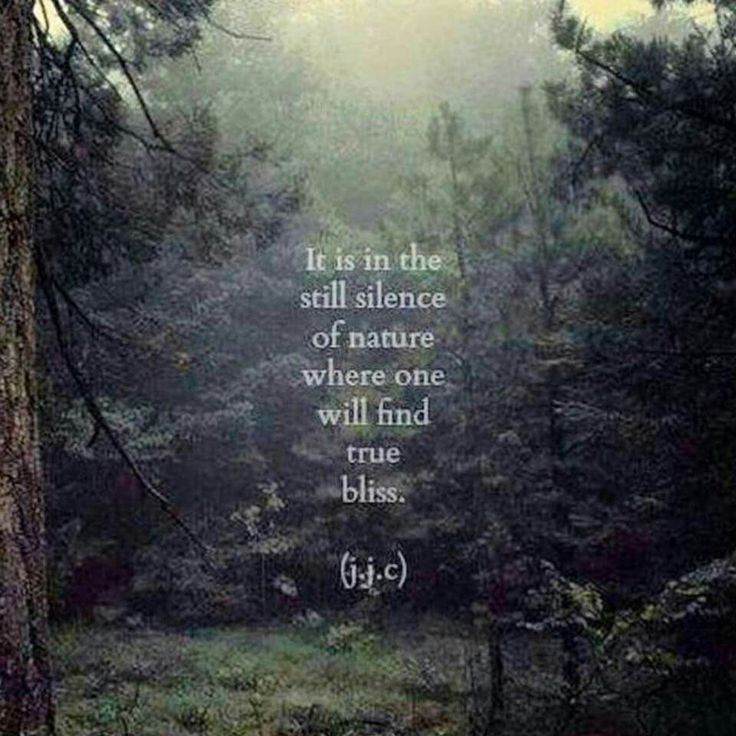 Quotes About Nature Tumblr Love E Another Quotes Olovo Quotes